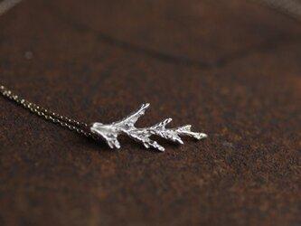 糸杉の葉のネックレス(s)の画像