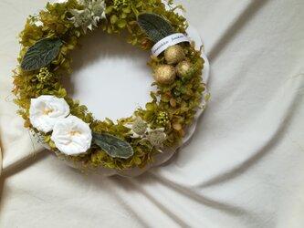 フレンチマリアンヌのgreen dolce wreath(グリーンドルチェ)リース プリザーブドフラワードライフラワーの画像