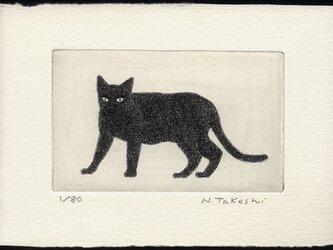 黒い猫・2020/ 銅版画 (作品のみ)の画像