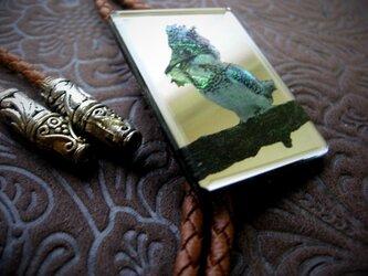 山翡翠(ヤマセミ)ループタイの画像