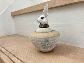 まりこ様専用 カノプス壺 ウサギの画像