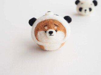 【受注製作】なりきりパンダのまゆ柴犬(赤柴・黒柴・白柴)  羊毛フェルト(アクレーヌ)の画像