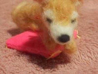 羊毛フェルトハンドメイド柴ちゃんの画像
