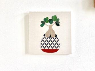 植物シリーズ ファブリックパネル ガジュマルの画像
