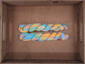 インダスからの贈り物【オリジナル段染め糸 細】(155)1本の画像