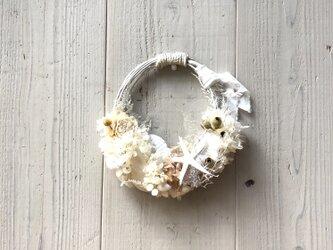 夏の白いキレイ系・貝殻とプリザーブドフラワーのリース・ドライも入ってますの画像