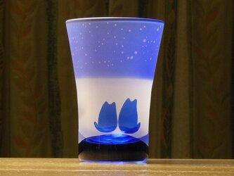 カップル猫の星降るタンブラー ~12星座 青 (1個)の画像