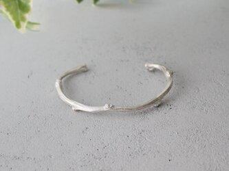 枝のバングル【 silver 】の画像