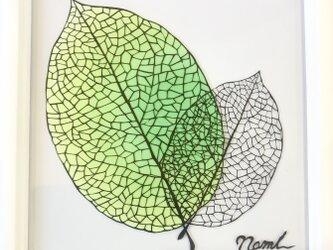 額装済み切り絵作品・葉の画像