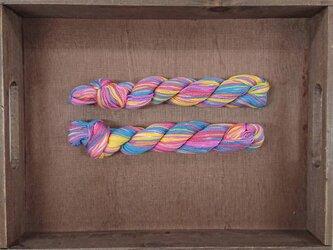 インダスからの贈り物【オリジナル段染め糸 細】(165) 1本の画像