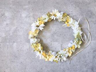 ミモザとデイジーの黄色い花冠の画像