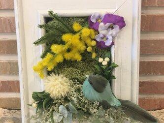 ミモザやスミレの花達と小鳥のウッドフレームの画像