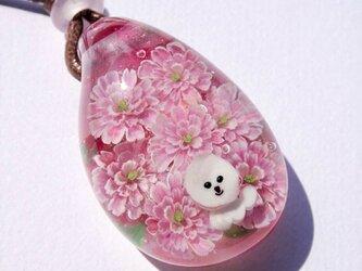 《八重桜》 ガラス とんぼ玉 ペンダント 花 桜 ビションフリーゼ 犬の画像