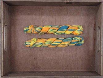 インダスからの贈り物【オリジナル段染め糸 細】(166) 1本の画像