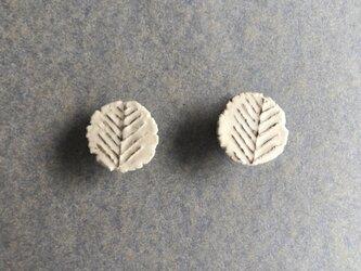 陶イヤリング 骨白 「メタセコイヤ」の画像