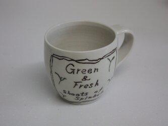 ほうれん草の新芽のコーヒーカップの画像