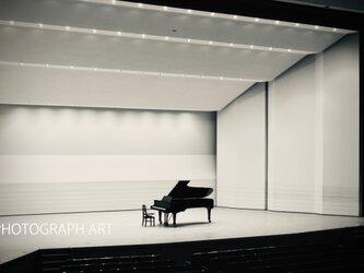 W309   Piano concertosの画像