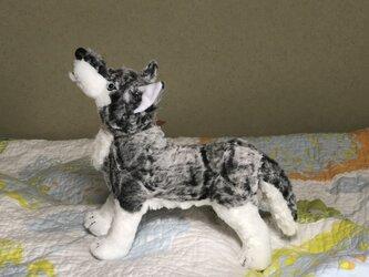 オオカミ立ち型リアルの画像