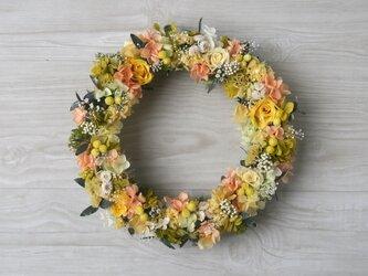 vitamin color wreath (L)の画像