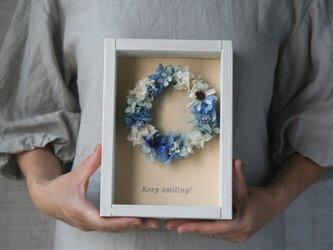 送料無料 壁掛け Blue daisyの画像