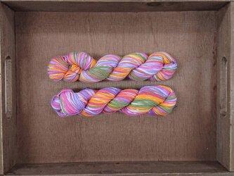 インダスからの贈り物【オリジナル段染め糸】(171) 1本の画像