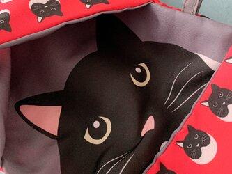 小物入れにもなる猫柄マスク用ポーチ02(レッド系)の画像