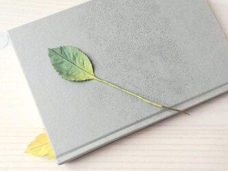 植物標本しおり(葉)の画像