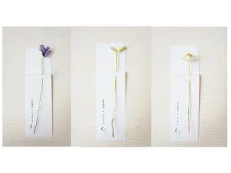 植物標本しおり(花と芽)の画像