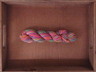 インダスからの贈り物【オリジナル段染め糸】(177) 1本の画像