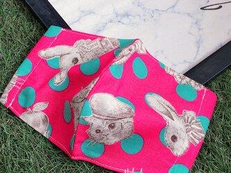 立体マスク  キッズ オトナ コットン ジョリーフルール ウサギ 猫の画像
