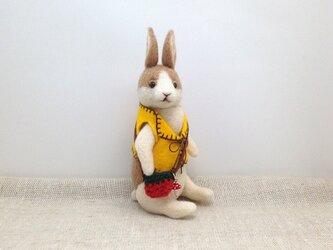 チョッキを着たウサギさん(薄茶)の画像