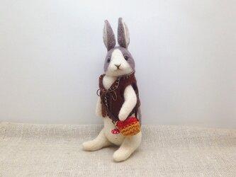 チョッキを着たウサギさん(灰)の画像