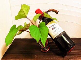 ワインホルダー(小)ワインボトル250ml用の画像