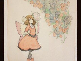 妖精と花の王国の画像