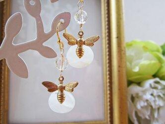 (sale) Honey Beeの画像