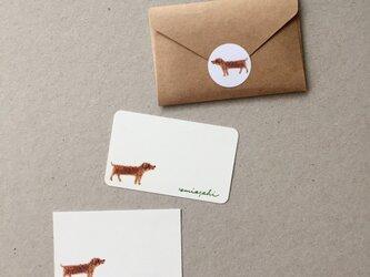 いぬのメッセージカード サンキューカード 20枚の画像