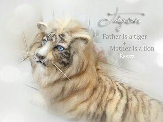 タイゴン トラ+ライオン 羊毛フェルトの画像