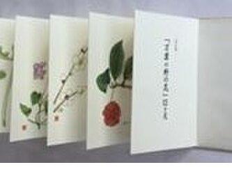 彩色版『万葉の野の花』12ケ月 の画像