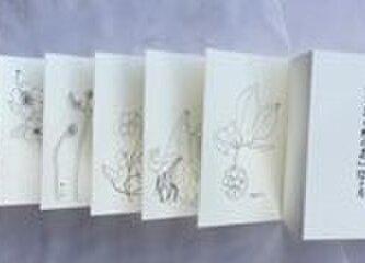 線画版『万葉の野の花』12ケ月 の画像