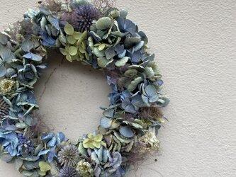 初夏のリース アンティーク紫陽花のリース 1の画像