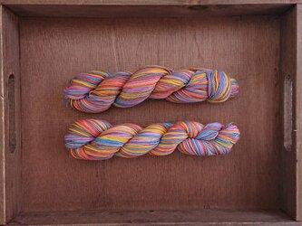 【売切】インダスからの贈り物【オリジナル段染め糸】(187) 1本の画像