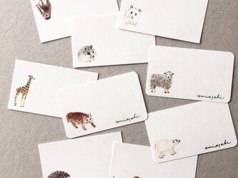 選べる動物のメッセージカード サンキューカード 20枚の画像