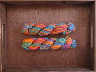 【売切】インダスからの贈り物【オリジナル段染め糸】(188)1本の画像