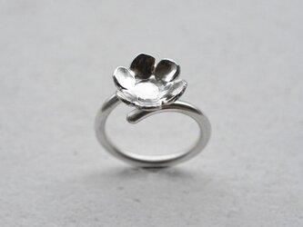 シルバーリング flower02の画像