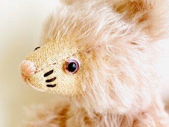 シャトン・コットンピーチ 子猫のぬいぐるみ プレゼント ギフト ねこ こねこ 紫の画像