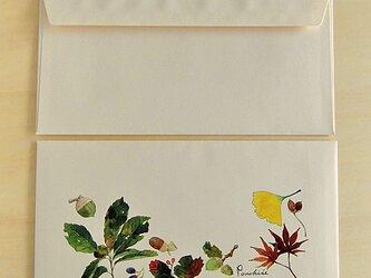洋長3封筒 木の実の画像