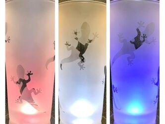ヤモリ(家守)のストレートグラスの画像