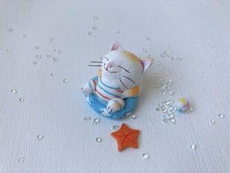 浮き輪猫さん 白黄トラの画像
