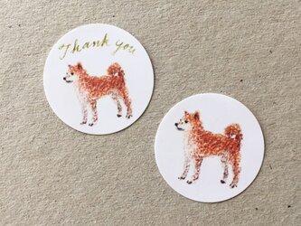 柴犬のサンキューシールの画像