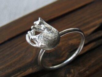 ねるねこリング * Nap Cat Ringの画像